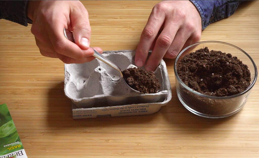A person uses an egg carton to create an herb planter.