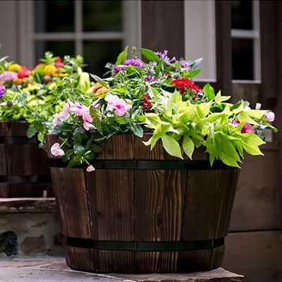 4 Ways to Create Drainage in Your Containers