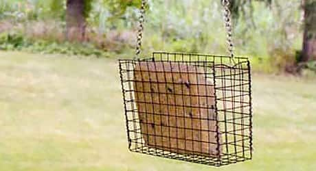 Insert suet brick - Suet Bird Feeder