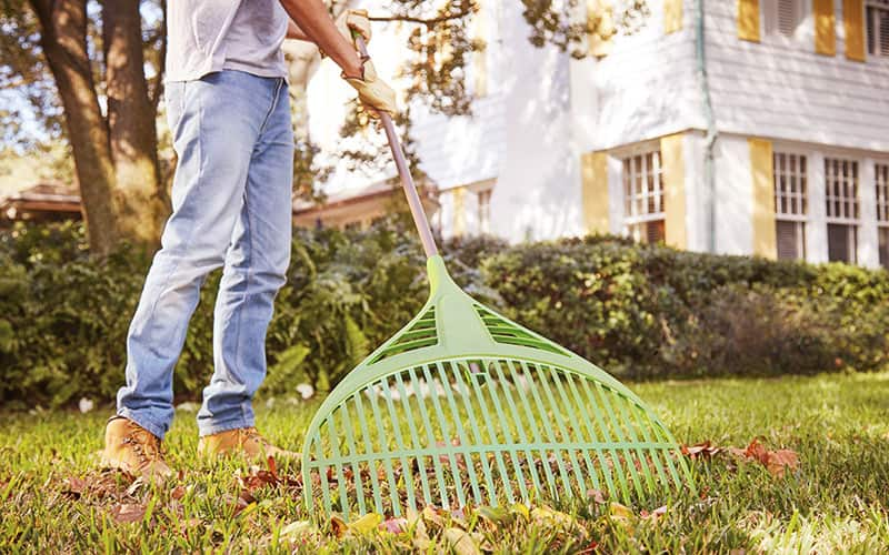 Prep Your Lawn - Lawn Watering Tips Techniques