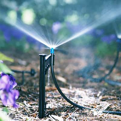 Lawn Watering Tips & Techniques