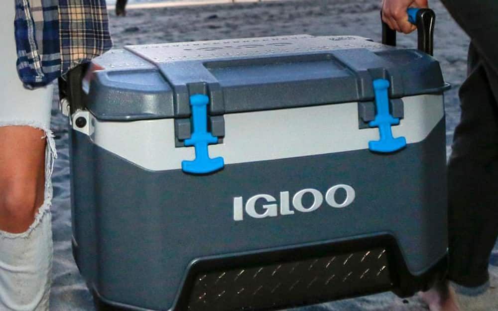 Cooler with animal-resistant latches for camping