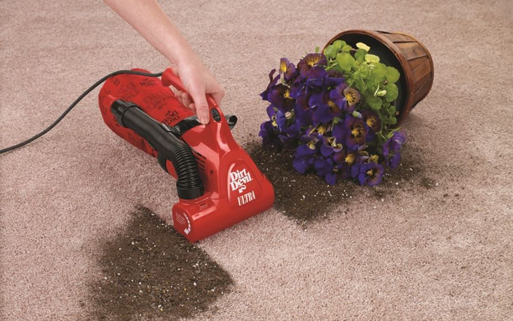 handheld vacuum cleaning plant dirt off carpet