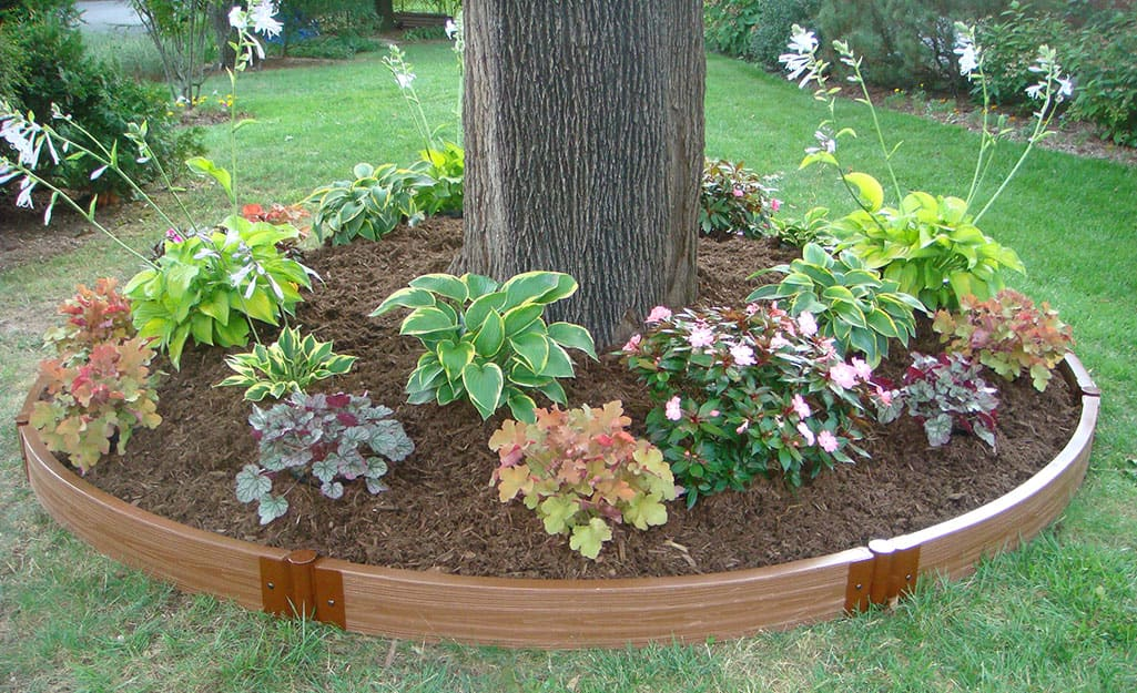 A landscape tree ring with flowers planted inside.