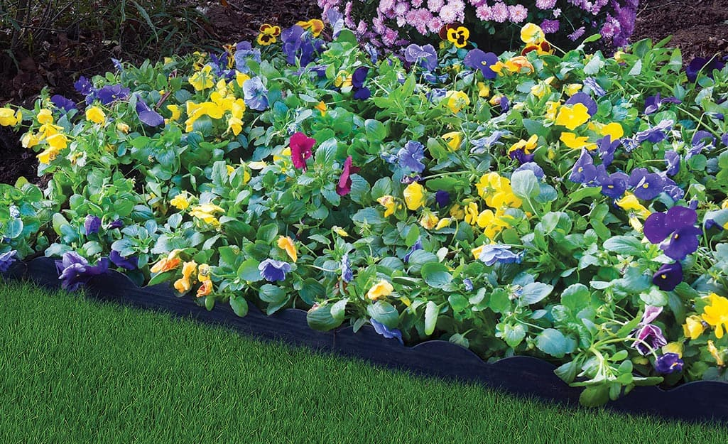 Plastic edging installed between a flower bed and lawn.