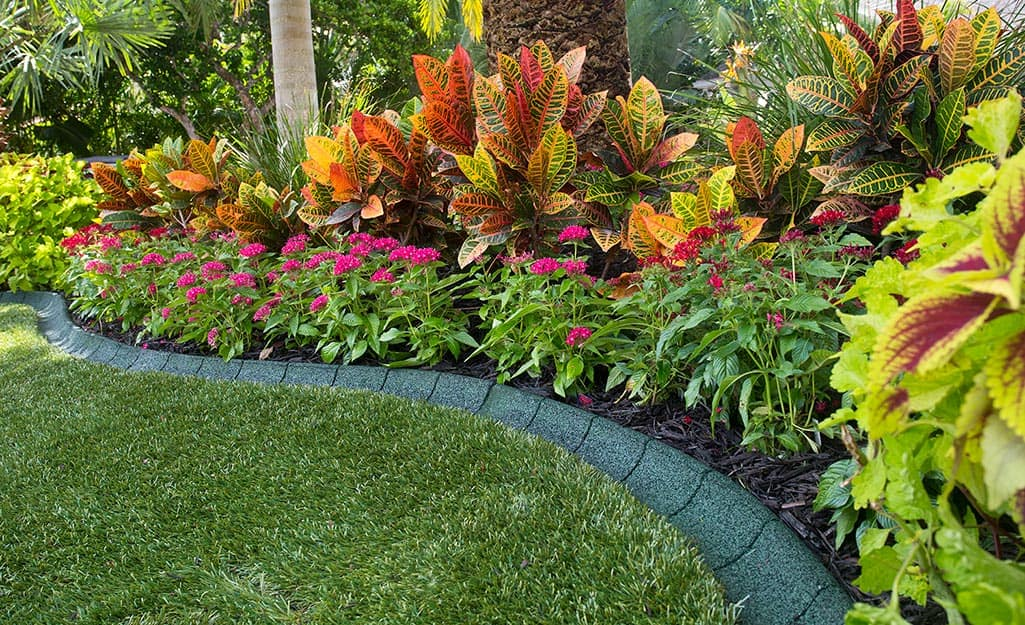 Rubber edging installed between a flower bed and lawn.