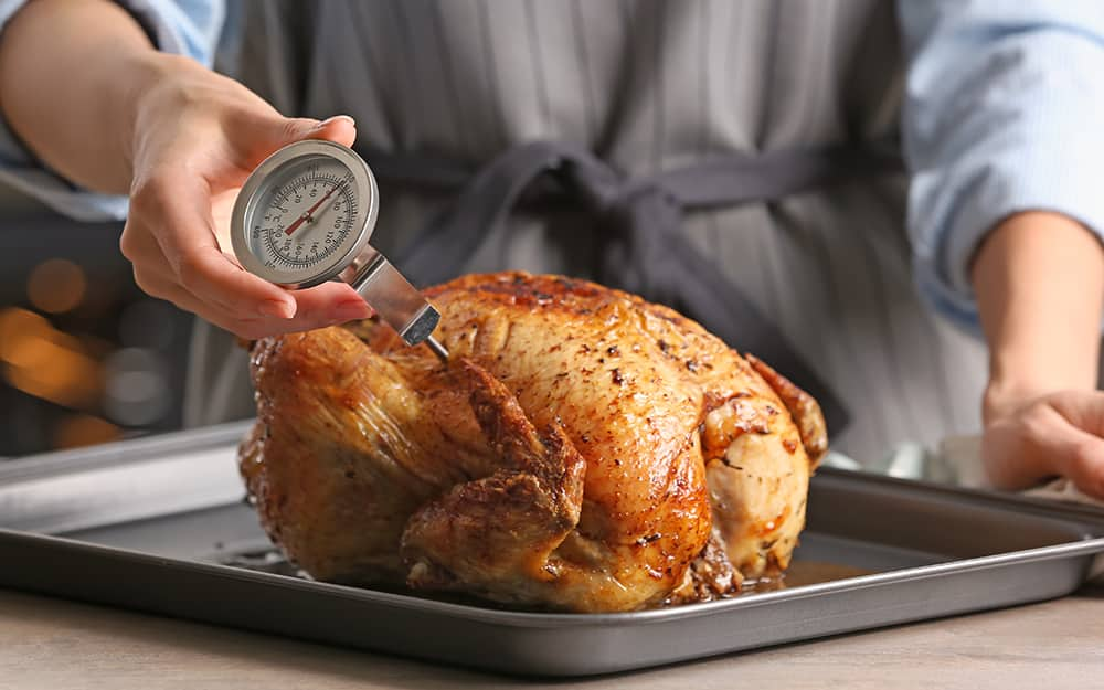A dial thermometer measures the internal temperature of poultry.