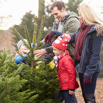 A family with young children choosing a Christmas tree.