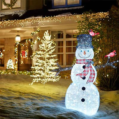 Brighten the Night with Holiday Lights