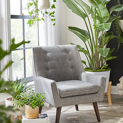 An upholstered chair surrounded by houseplants