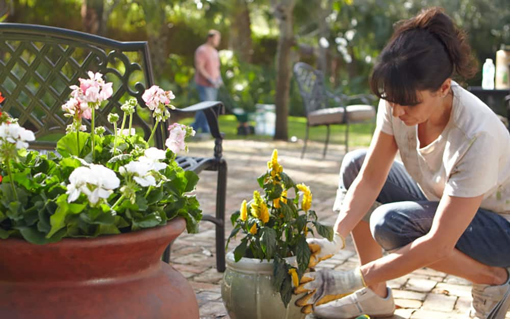A woman planting yellow flowers in a round planter.
