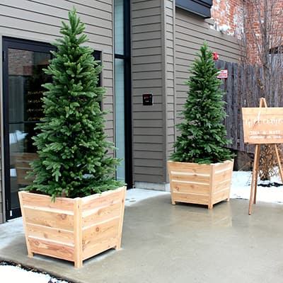 An outdoor entryway decorated with DIY Christmas tree planters.