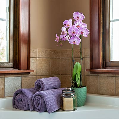 Orchid in a bathroom