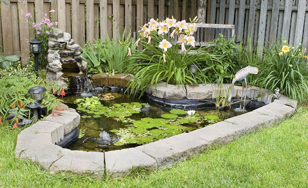 A small pond brims with floating lily pads and is surrounded by a daylilies and a waterfall.