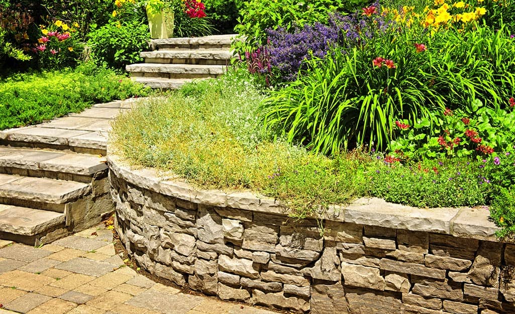 A natural stone retaining wall with capstones and lush garden beds.