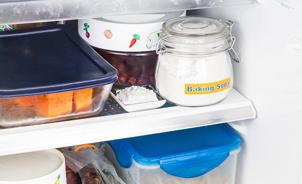 A small dish of baking soda sits on a refrigerator shelf.