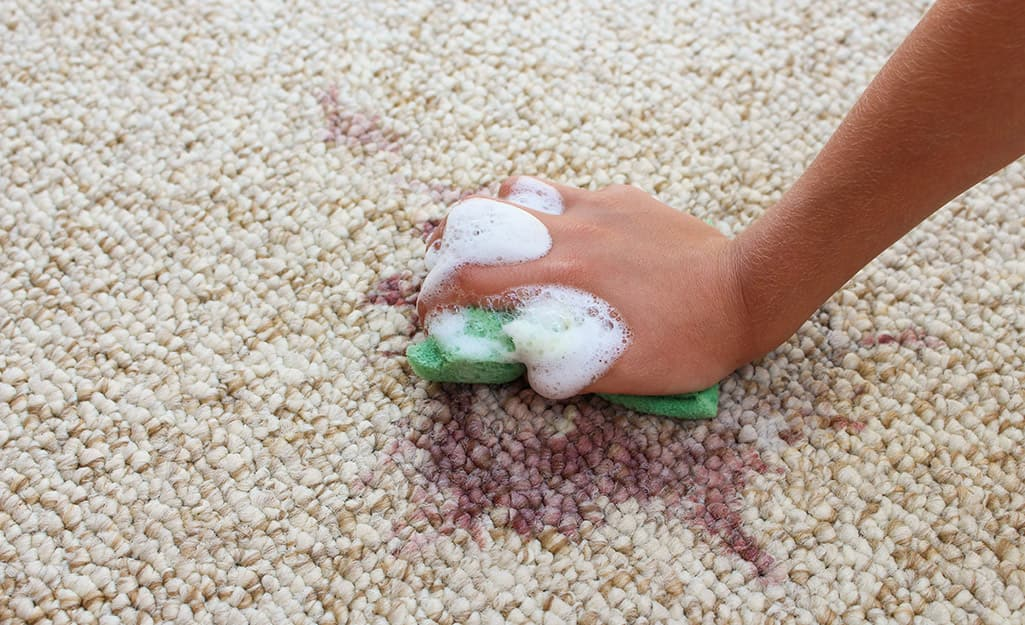 A person using a soapy sponge to spot clean a rug.