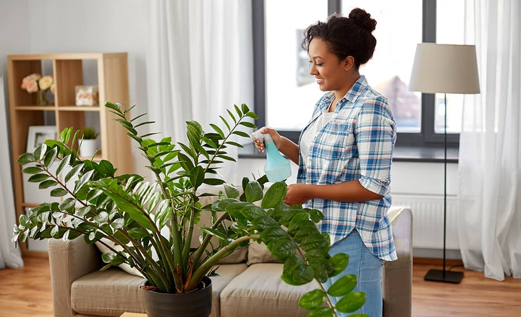 A woman uses a spray bottle to spritz a large houseplant.