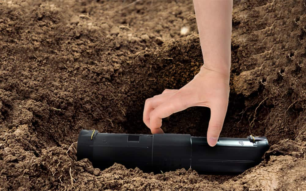A person putting a mole trap into a hole.