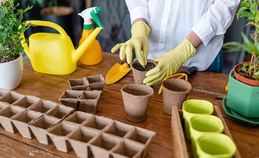 A person planting seeds in seed starter pots.