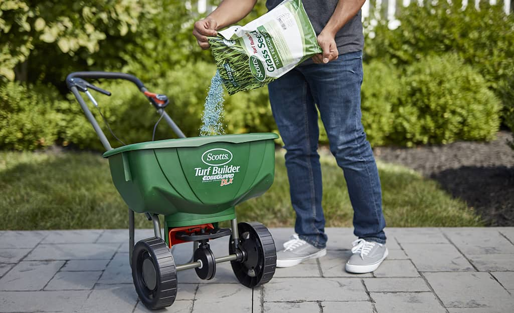 A person pouring grass seed into a lawn spreader.