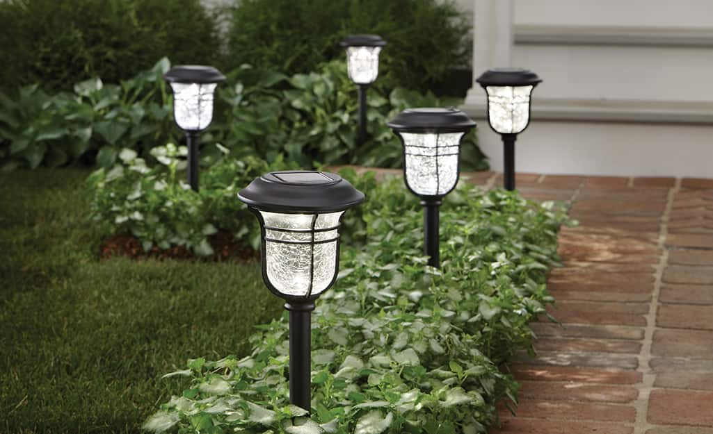 Solar landscape lighting installed in low greenery along a brick path.