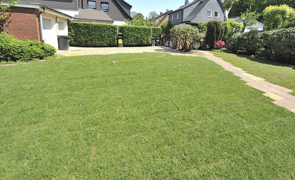 A front lawn filled with rows of sod.