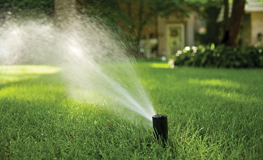 A sprinkler waters a green lawn.