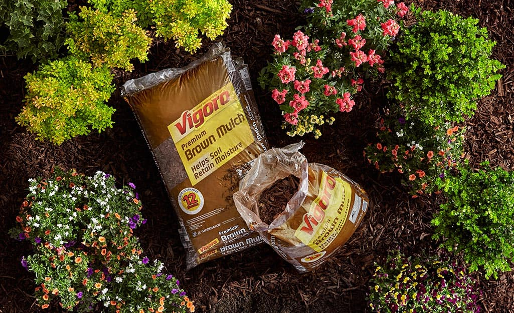 Bags of Vigoro brown mulch resting in a mulched garden bed.