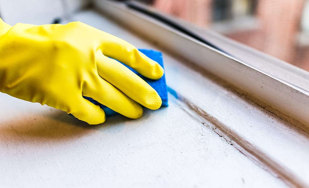 Person cleans a window sill.