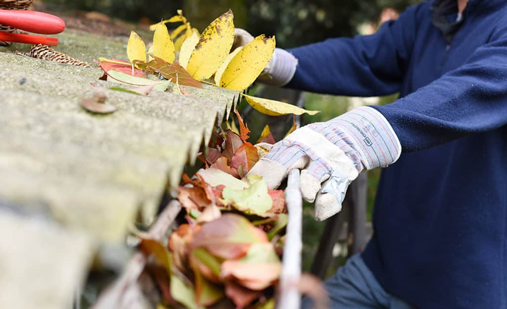 A gloved hand cleaning a gutter clogged with leaves.