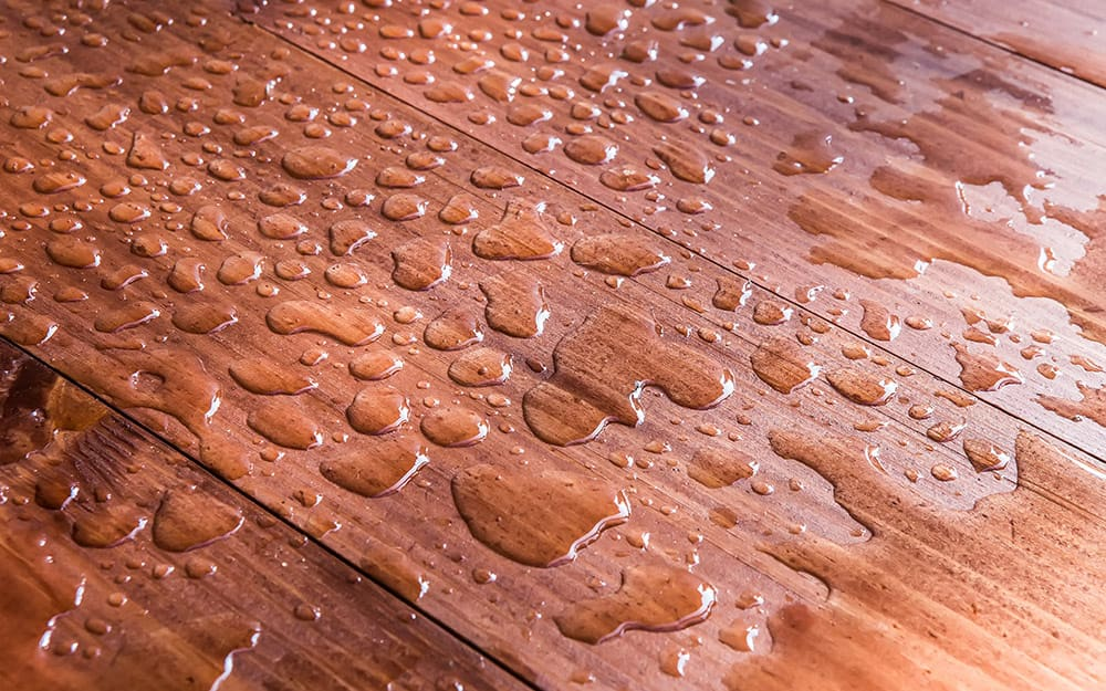 Water droplets stand on deck boards.
