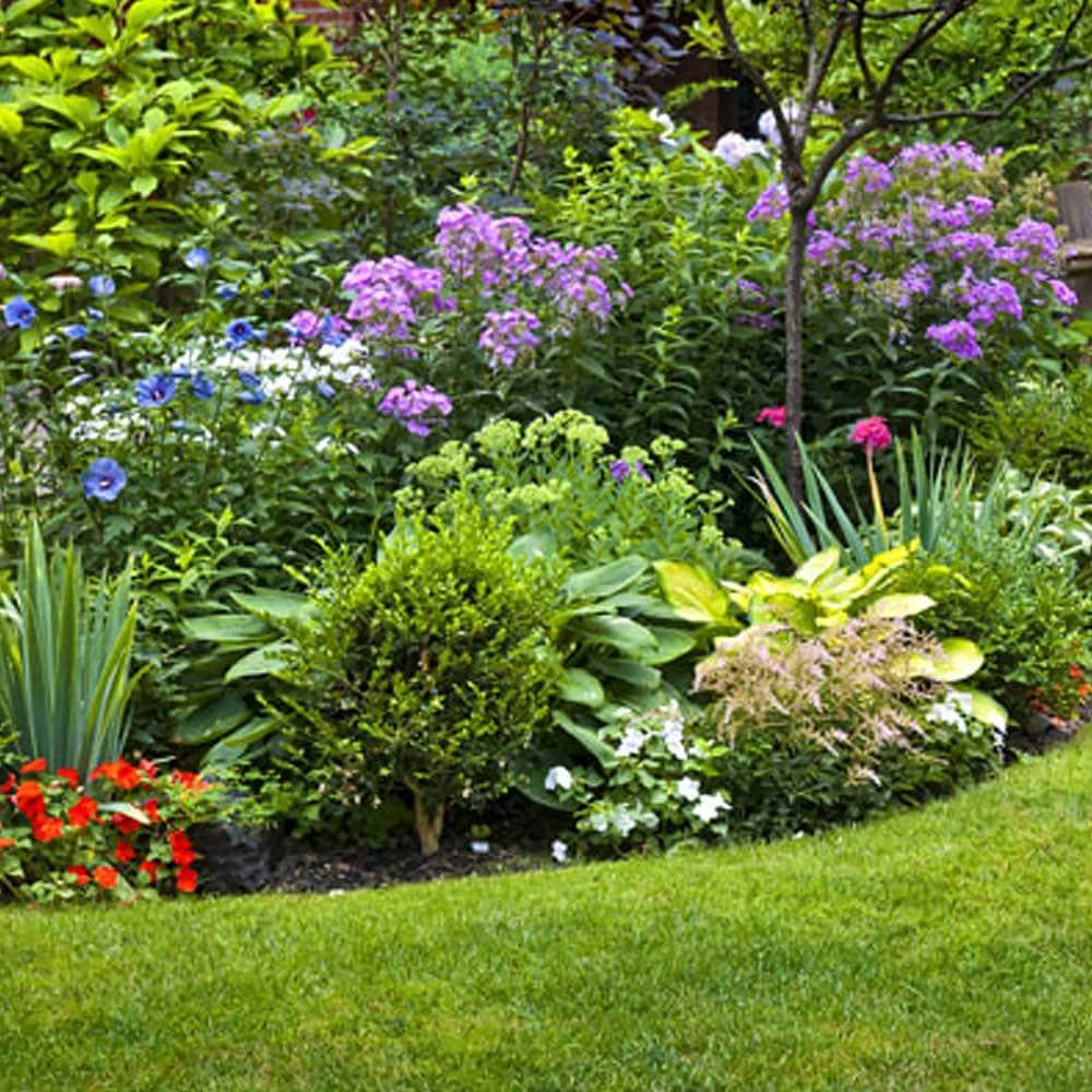How To Start A Flower Garden The Home Depot