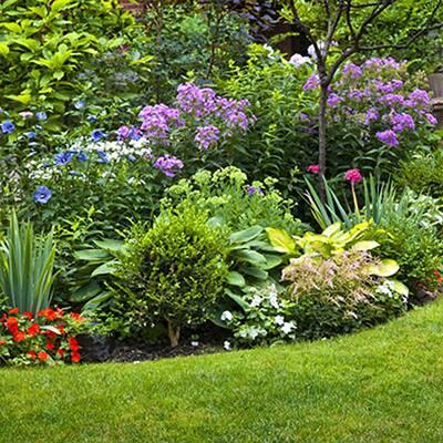 How to Start a Flower Garden in 3 Easy Steps