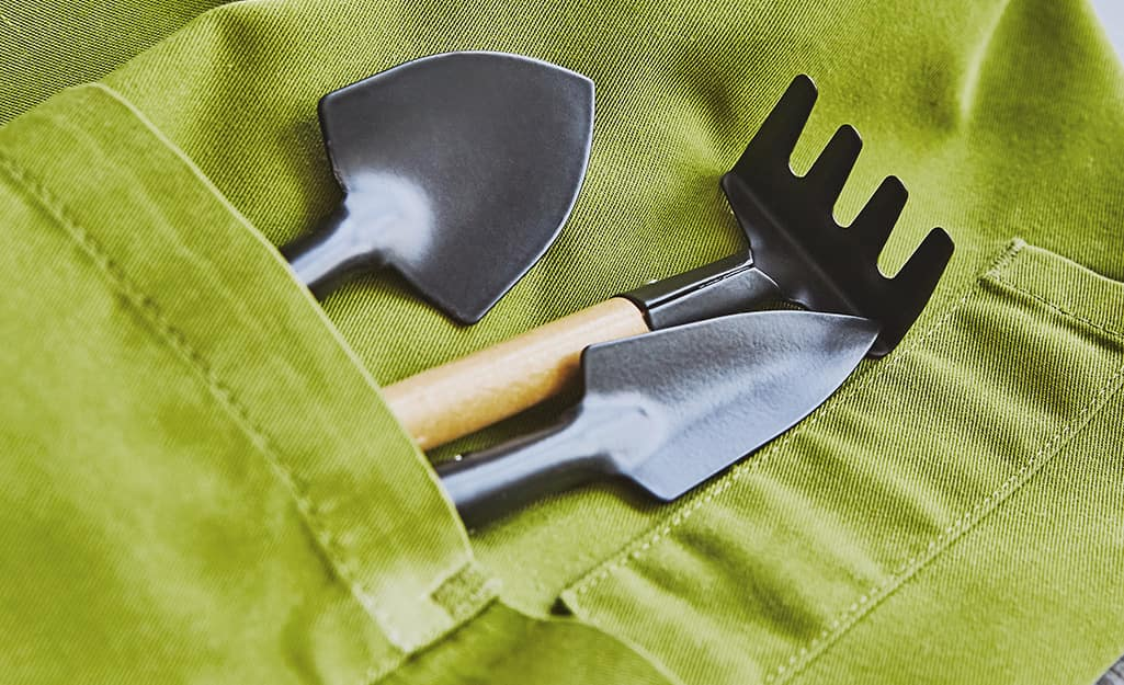 Garden tools in the pocket of a green apron.