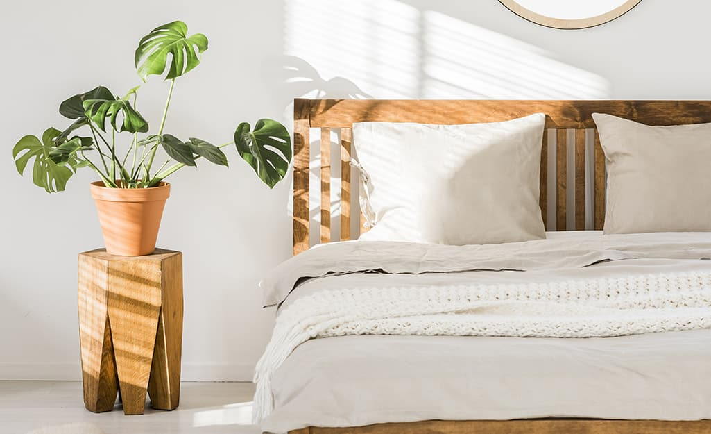 A Monstera plant on a wooden plant stand getting sunlight near a bed in a bedroom.