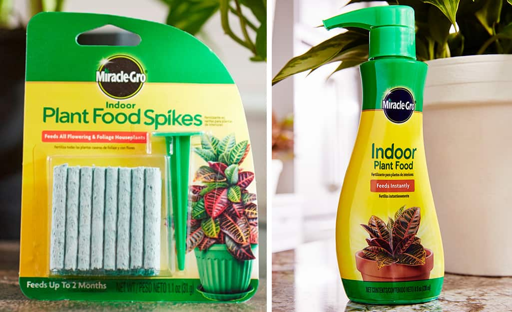 Indoor plant food spikes in a package and indoor plant food in a pump bottle.
