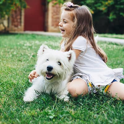 Girl playing with a dog on an organic lawn.