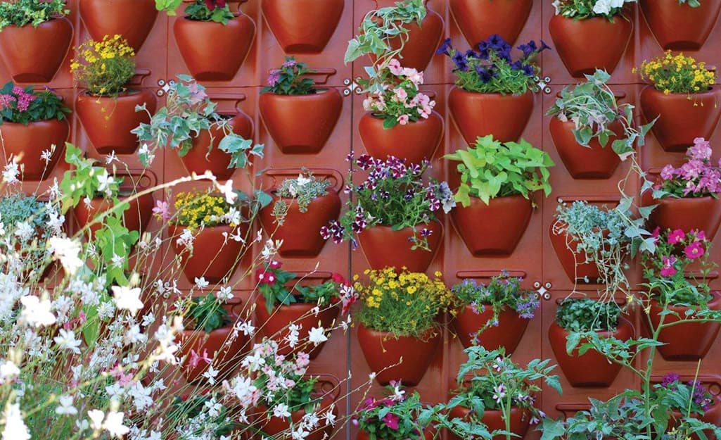 An outdoor wall hung with small planters filled with foliage and flowering plants.