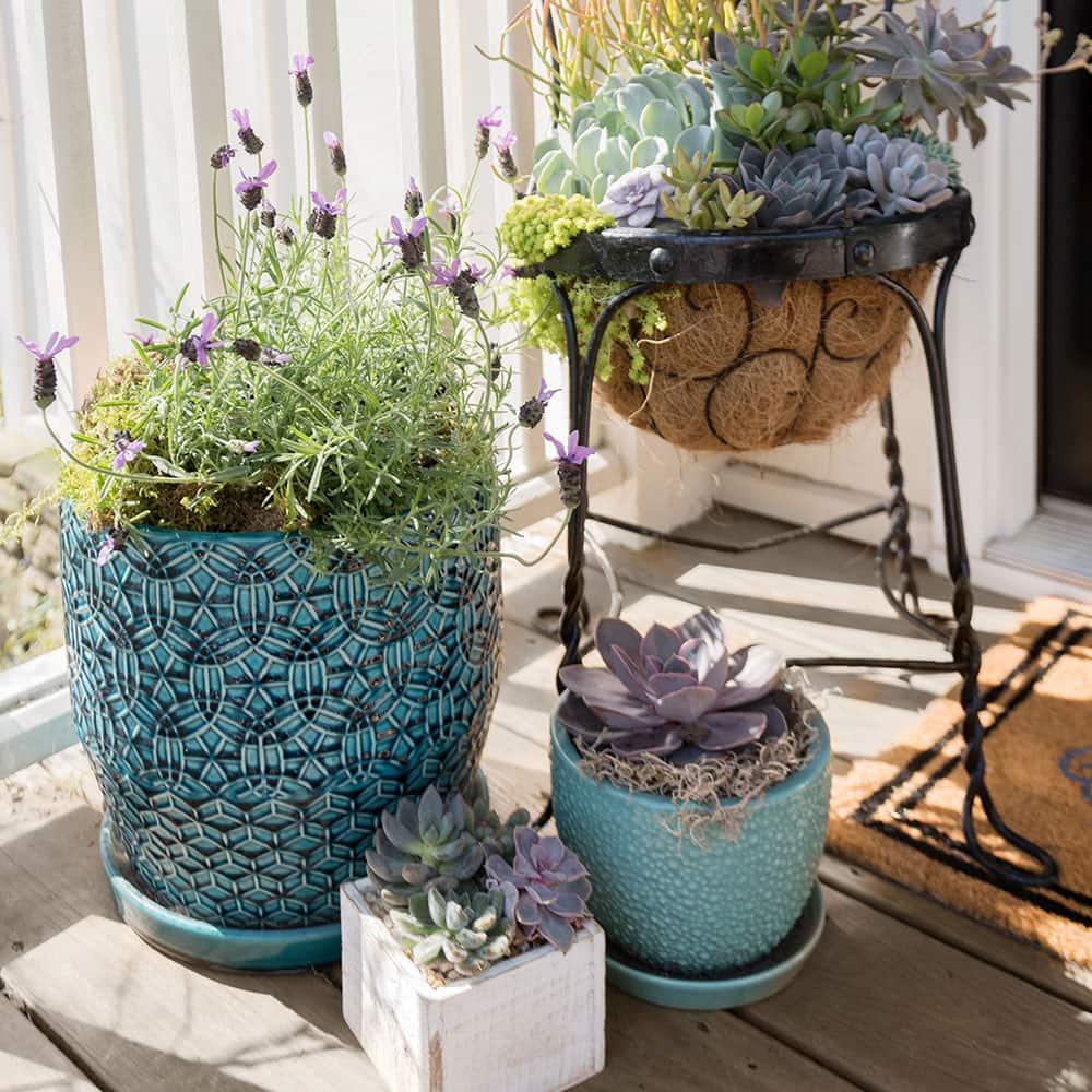 Pinterest Garden Ideas The Home Depot