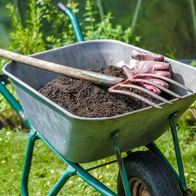 Prepare Beds with Compost and Organic Soils