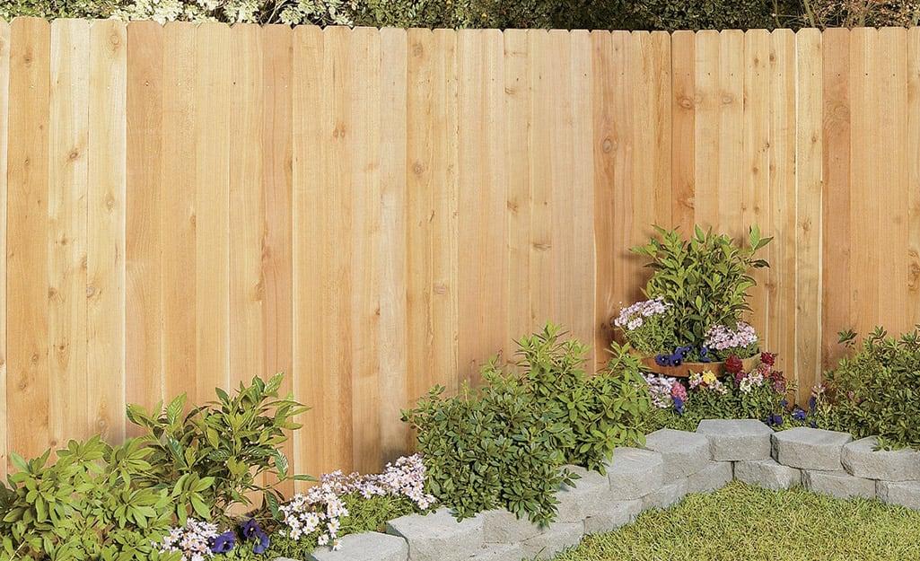 A cedar privacy fences features a natural warm color