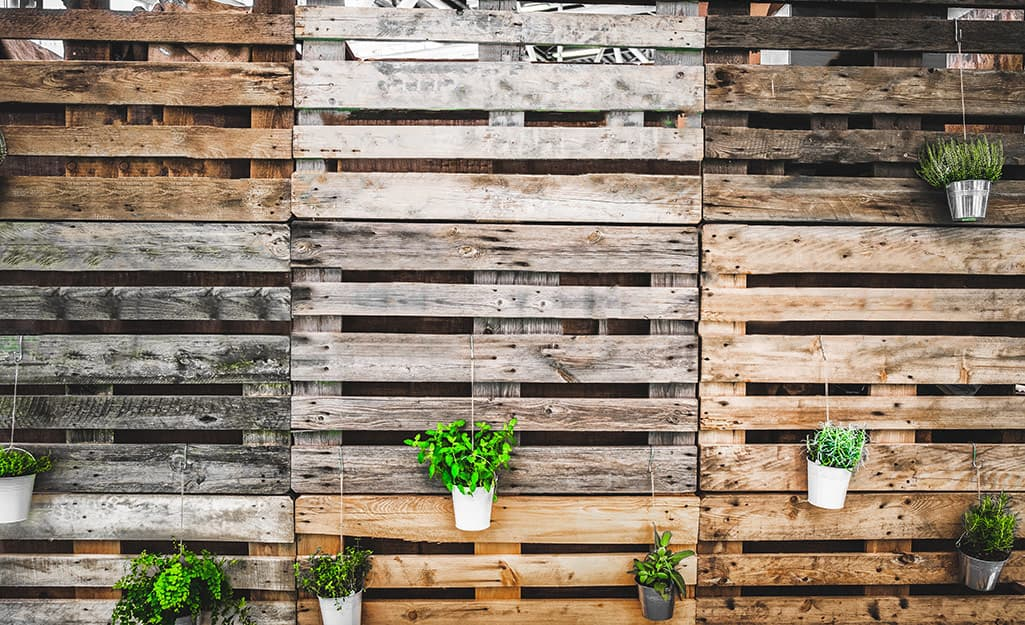 Potted plants hang from the slats of a fence made from upcycled shipping pallets