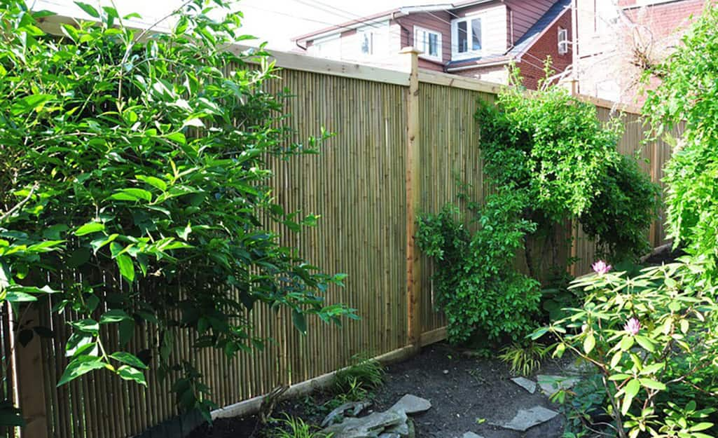 Pieces of cut bamboo make up the panels of a backyard privacy fence