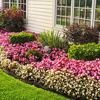 Save Time and Edge Lawns for a Polished Look