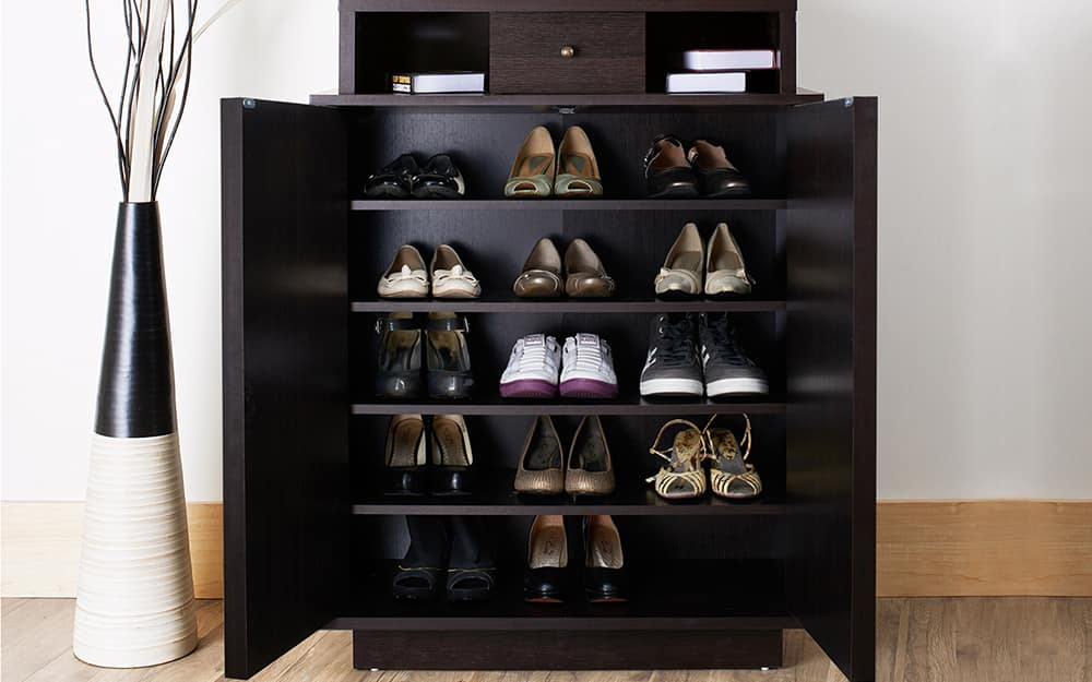 A cabinet with organized shoe storage