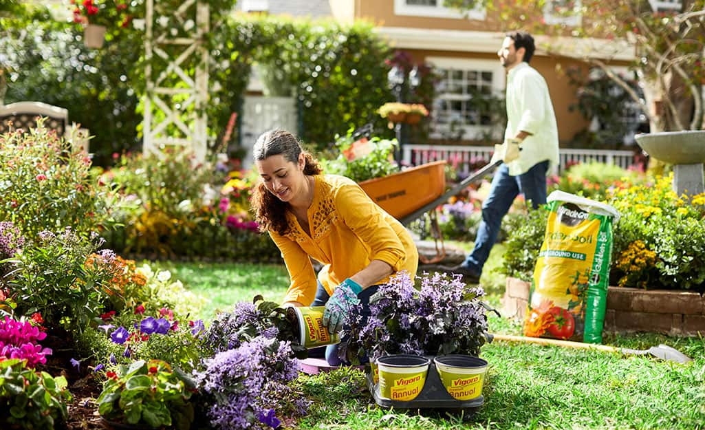 A person adds plants and garden soil to a garden.