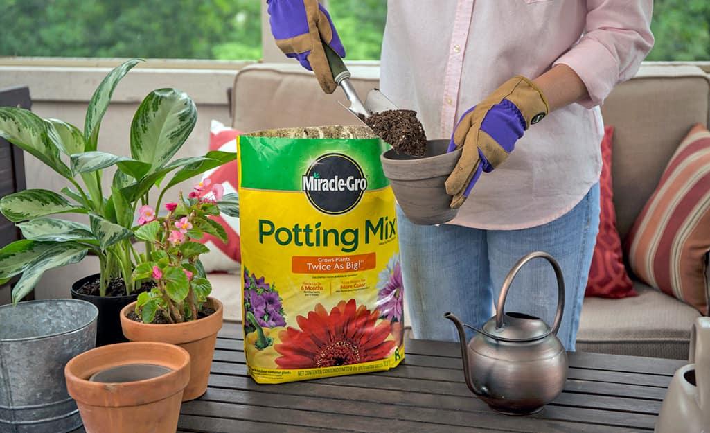 A person fills a pot with potting mix.