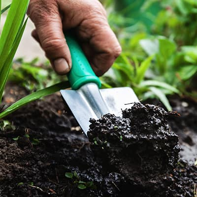 A person digging into soil with a trowel.