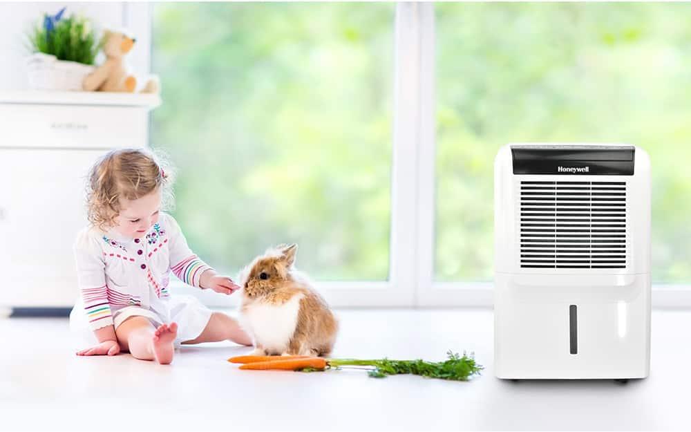 A girl and a pet rabbit play in a room near a dehumidifier.
